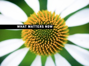 What Matters Now from Seth Godin
