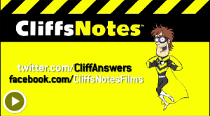 the help cliffnotes