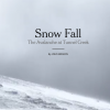Snow Fall from the New York Times