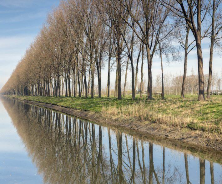 Near Bruges. Image - iStockphoto: Studio Annika