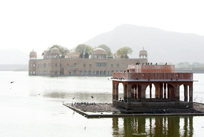 Jal Mahal at Man Sagar Lake in Jaipur. Image - iStockphoto: pilesasmiles