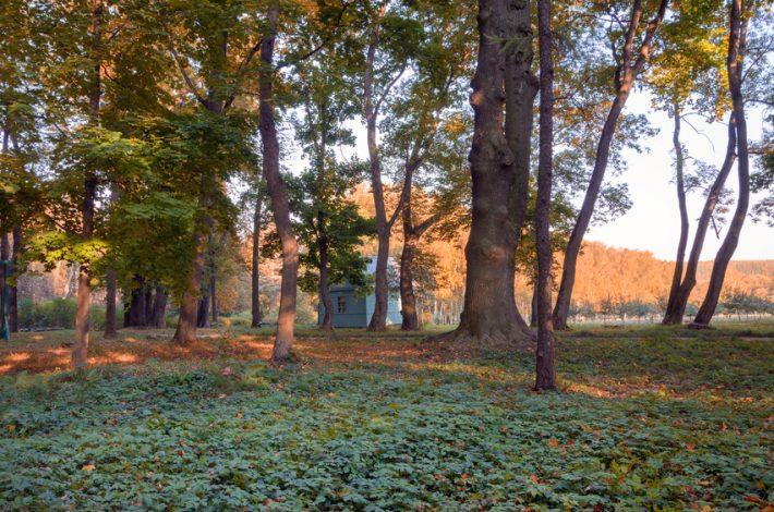 Near Yasnaya Polyana in Tula. Image - iStockphoto: Valery Boyarsky