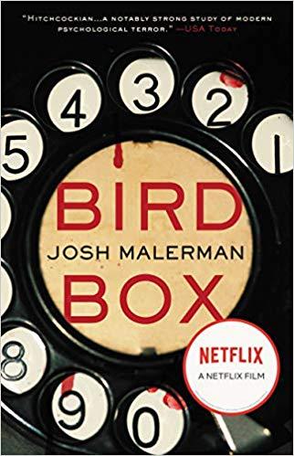 bird box meaning